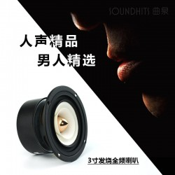 Full Range Frequency Speaker - 2PCS/lot
